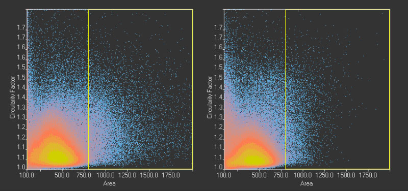 Figure 12 Scatter plot showing circularity vs. area distribution of the 1.10 million nuclei detected in the GFP channel (left) and the 1.13 million nuclei detected in the brightfield channel by AI (right). The yellow rectangle indicates unusually large objects.