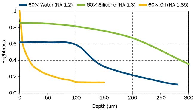 Silicone vs. Water or Oil