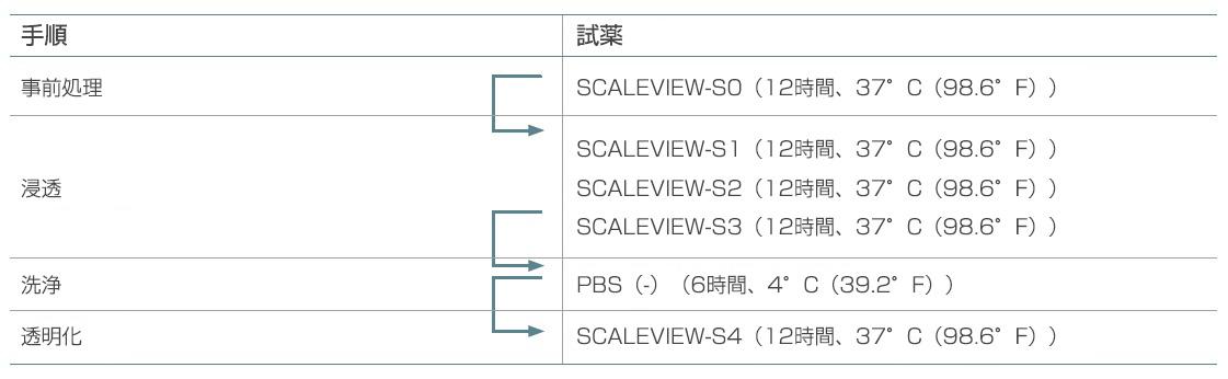 表1. 本来のSCALEVIEW-Sプロトコル