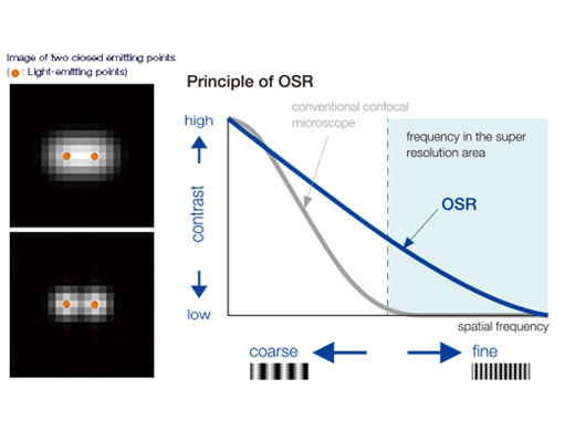 OSR Principle