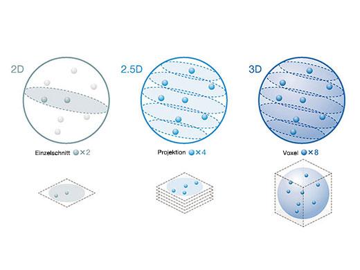 Präzise Ergebnisse der 3D-Zellanalyse