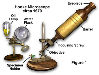 parts of a Hooke