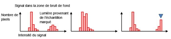 Figure 7 – Un histogramme créé avec une image normalement exposée (à gauche), sous-exposée (au centre), et surexposée avec une saturation pour le marqueur bleu (à droite).
