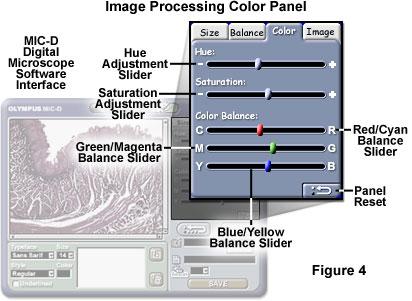 Digital Imaging in Optical Microscopy - MIC-D Interface