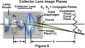 Microscope optical components introduction the first stage of the microscope optical train is the lamphouse which contains the lamp and collector lens and is responsible for establishing the ccuart Image collections