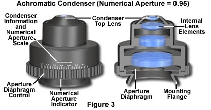 Anatomy Of A Microscope Substage Condensers Olympus