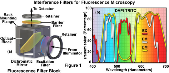 Interference Filters