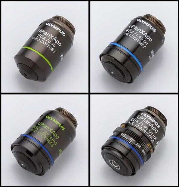 高開口数、色収差補正、フラットネスを兼ね備えたオリンパスX Line対物レンズ