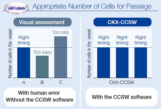 Appropriate Number of Cells for Passage