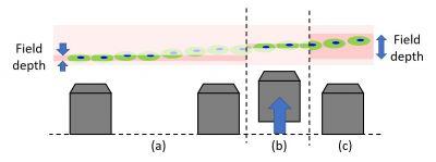 Microscopio invertido versus vertical